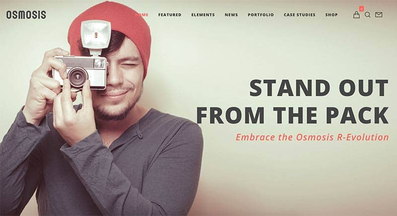 Osmosis WordPress Theme